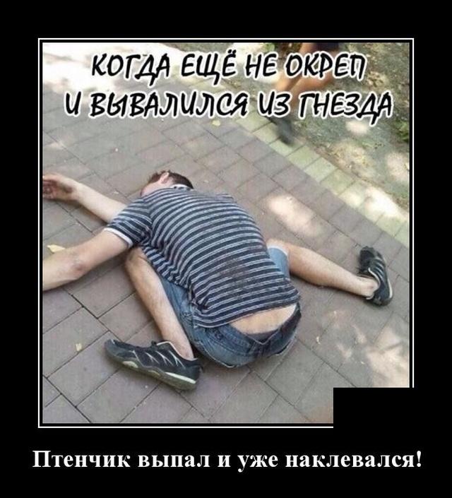 1581344688_demotivatory_09.jpg
