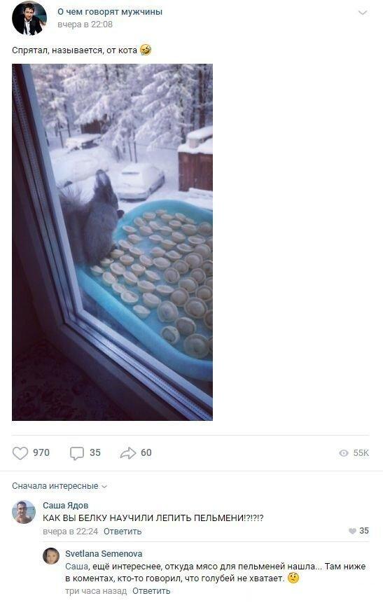 смешные комментарии к постам в соцсетях