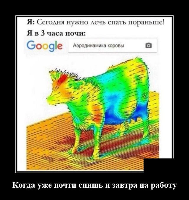 Демотиватор про аэродинамику коровы