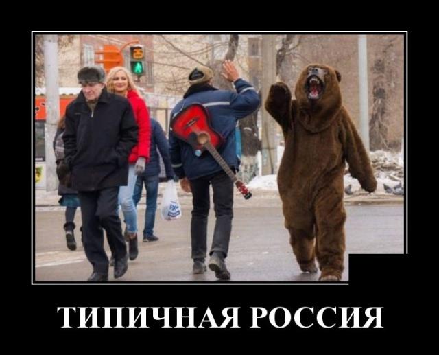 Демотиватор про медведя и Россию