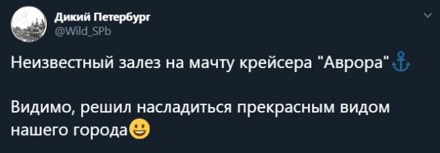 Твит паблика Дикий Петербург