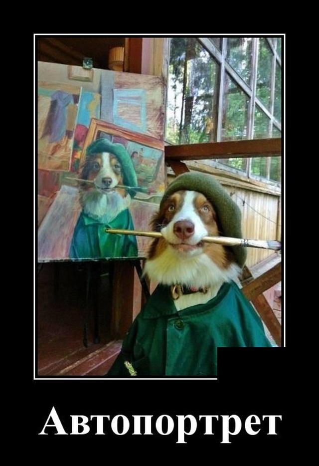 Демотиватор про собаку и автопортрет