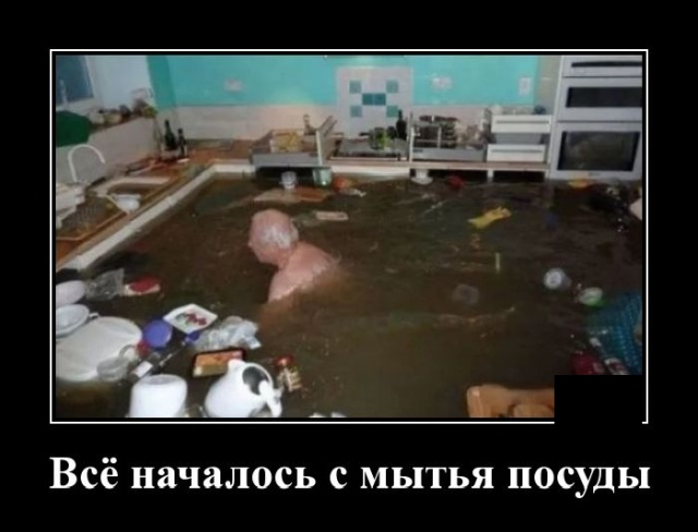 Демотиватор про мытье посуды