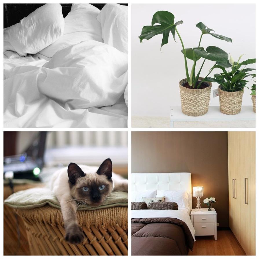Признаки того, что в вашем доме грязно (7 фото)