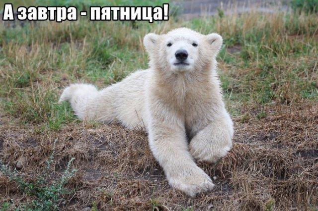 Трынделка - 05.03.2020