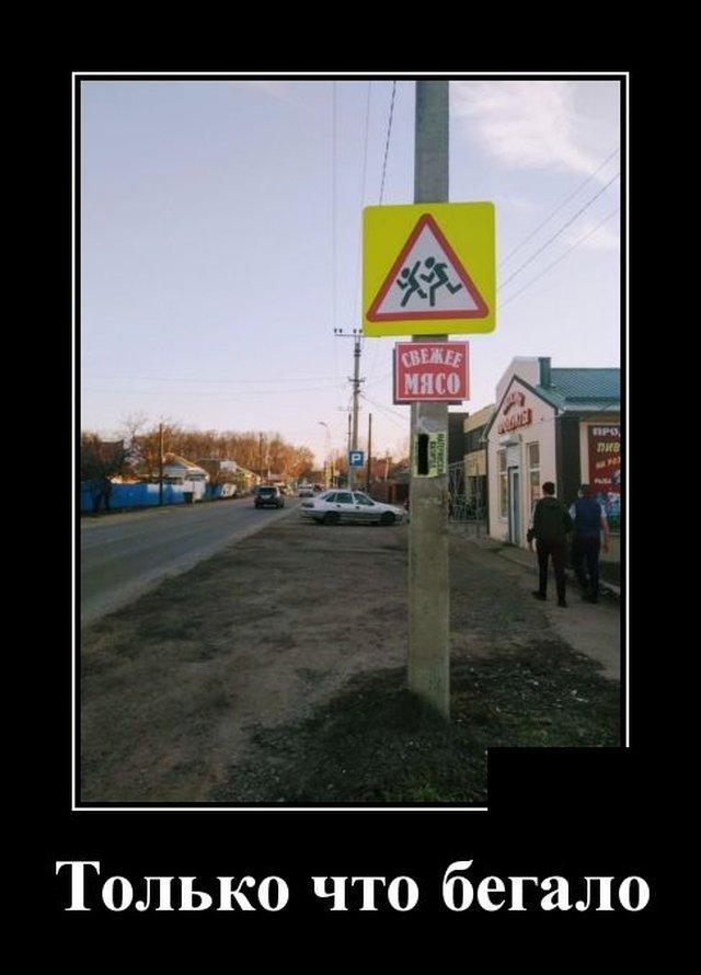 Демотиватор про пешеходов