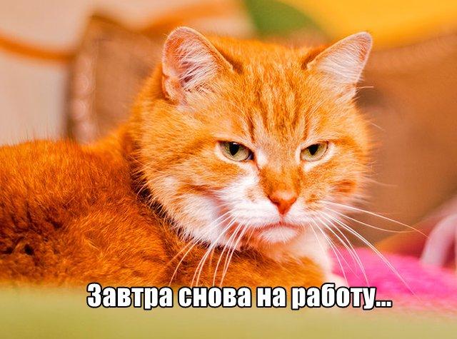 Трынделка - 09.03.2020