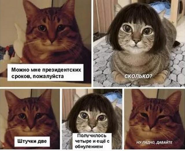 «Обнуляй и властвуй»: лучшие мемы Сети про обнуление президентских сроков Владимира Путина (16 фото)