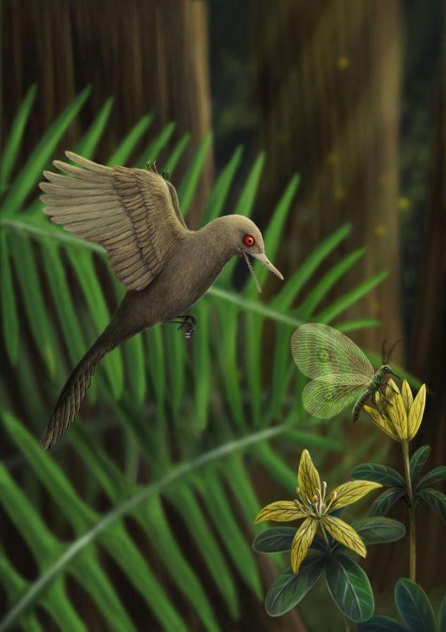 Мезозойский голубь