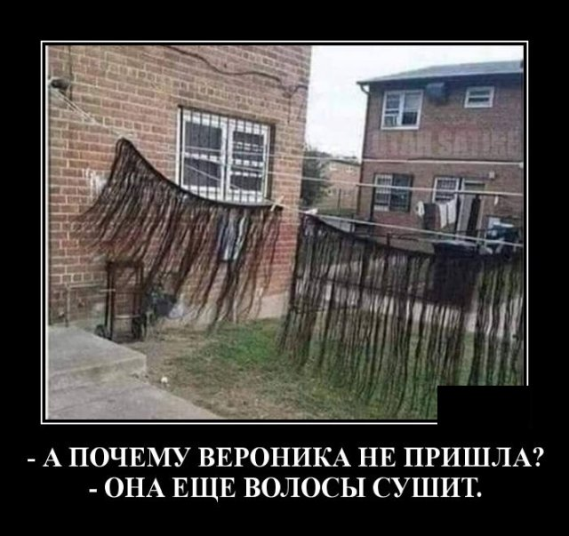 1584020803_demotivatory_14.jpg