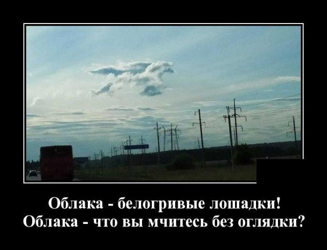 1584020804_demotivatory_02.jpg
