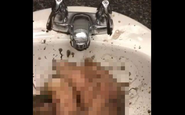 Моет руки