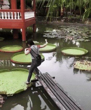 Превью падение в воду
