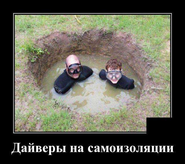 1585830107_demotivatory_09.jpg