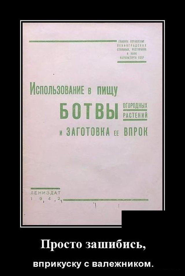 1586442193_demotivatory_05.jpg