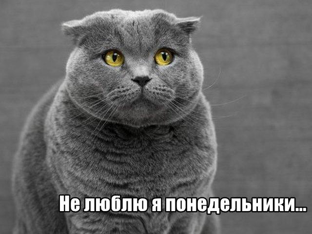 Трынделка - 13.04.2020