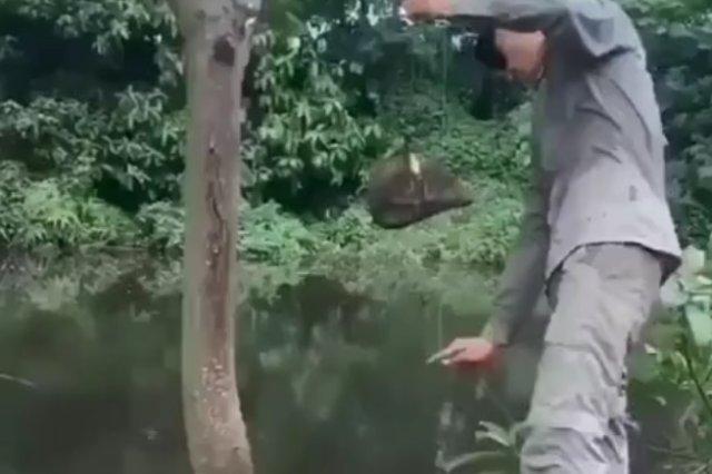 Поймать рыбу при помощи камня? Легко!