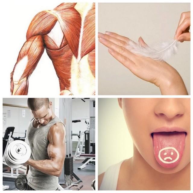 Невероятные факты о человеческом теле (8 фото)