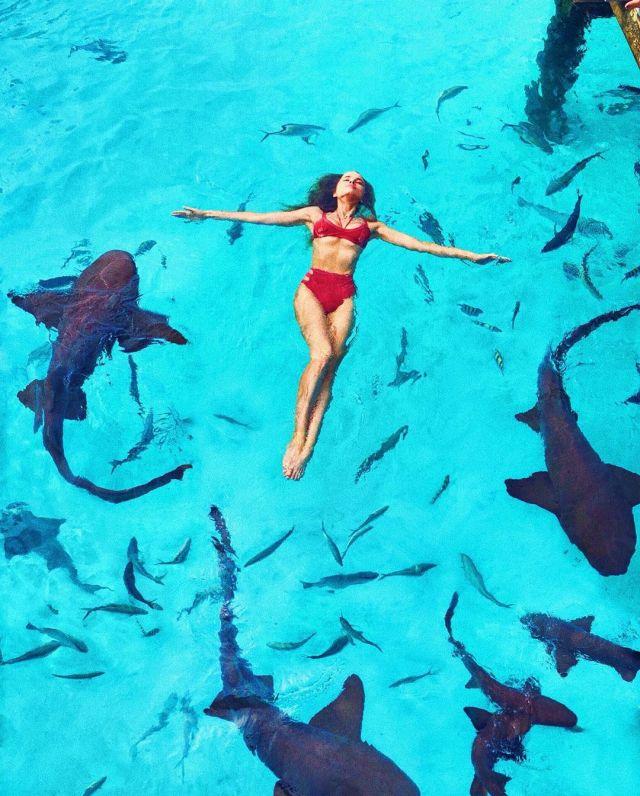 Таня Митюшина в бассейне с акулами