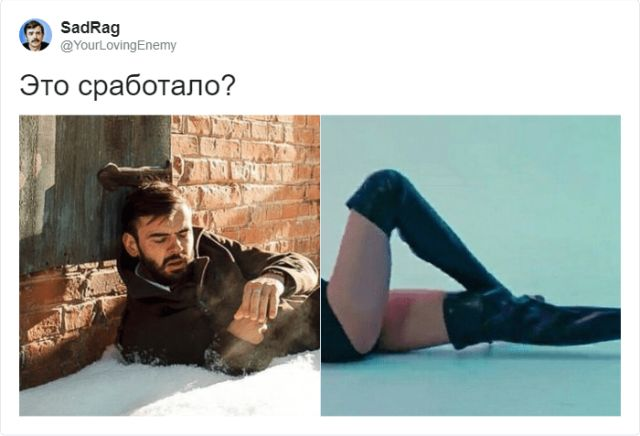 """""""Did it work"""": новый забавный мем в Твиттере"""