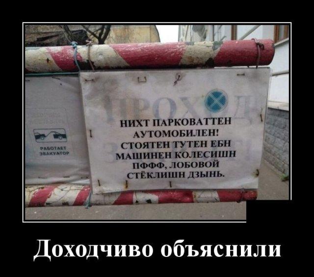 1588254297_demotivatory_08.jpg