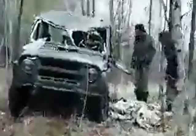 Автомобиль после нападения медведя
