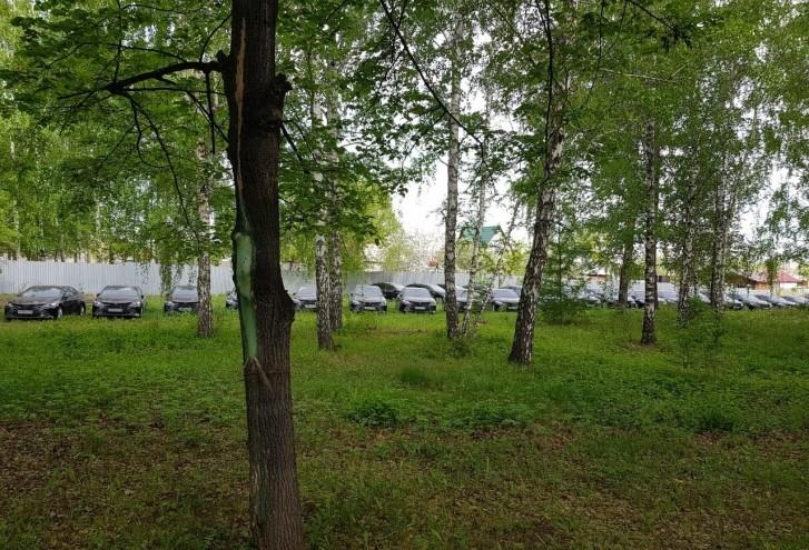 Toyota Camry в лесу Челябинска