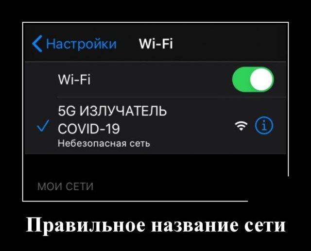 1590061299_demotivatory_10.jpg