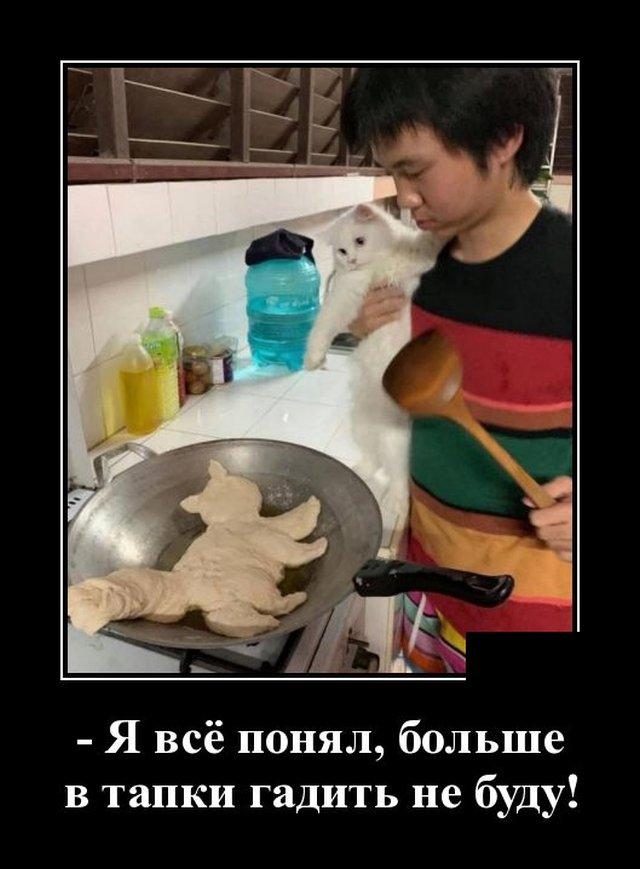 1591270428_demotivatory_19.jpg