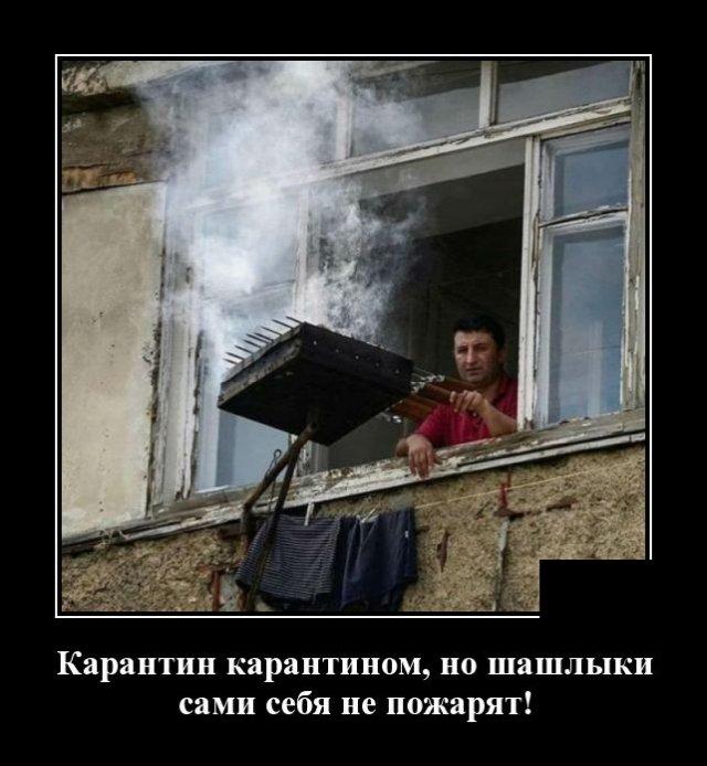 1591795943_demotivatory_20.jpg