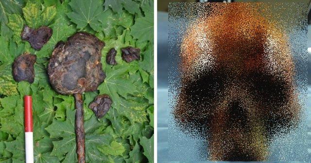 Ученые нашли остатки шведа