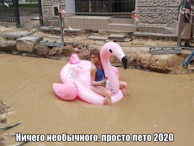 Смешные фото вечер 2 июля 2020
