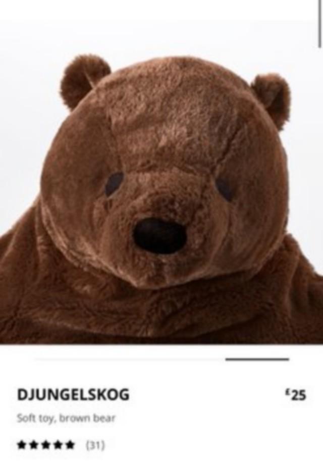 Новый хит сезона: Медведь Дьюнгельског, страдающий депрессией (10 фото)
