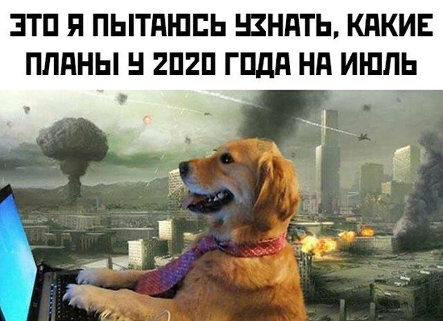 Смешные фото вечер 3 июля 2020