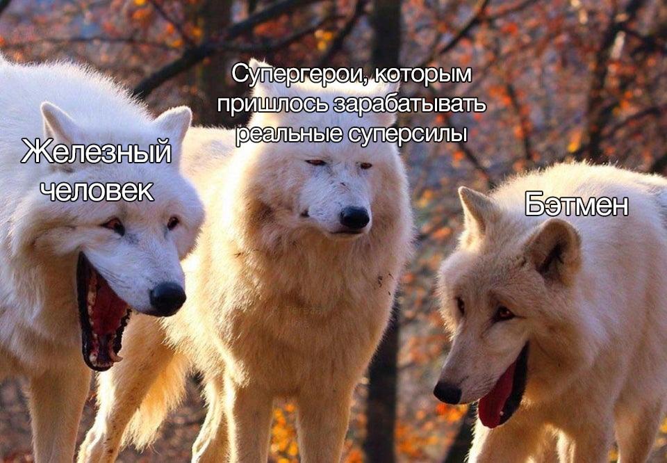 Новый мем про смеющихся волков взрывает социальные сети (12 фото)