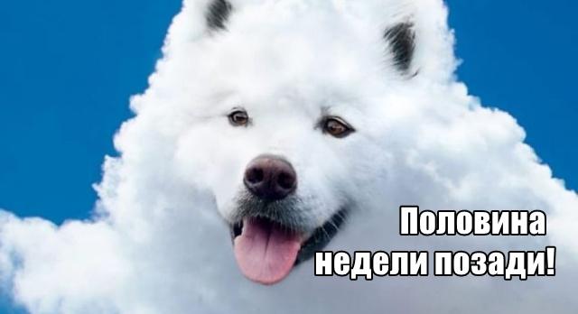 Трынделка - 05.08.2020
