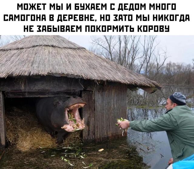 1596726824_podb_vecher_15.jpg