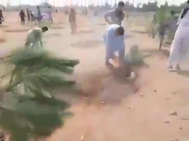 Жители Пакистана уничтожили 6 000 деревьев