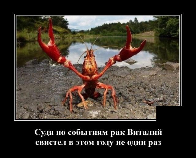 1597316377_demotivatory_04.jpg