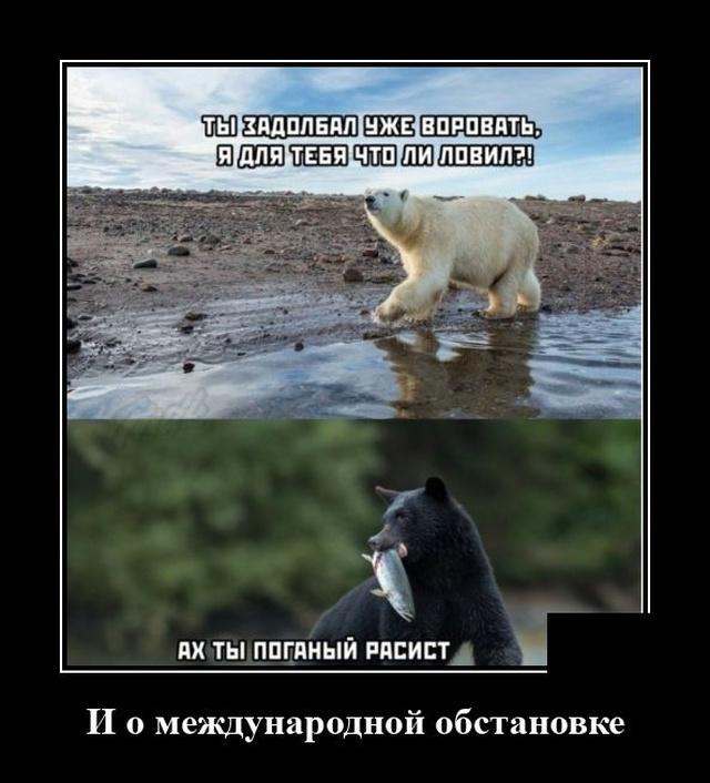 1597316409_demotivatory_13.jpg