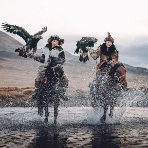 Охота с хищными птицами