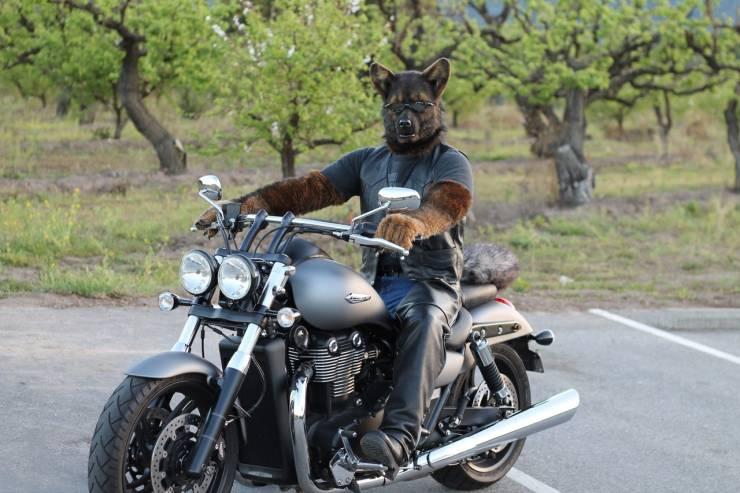Необычный шлем мотоциклиста