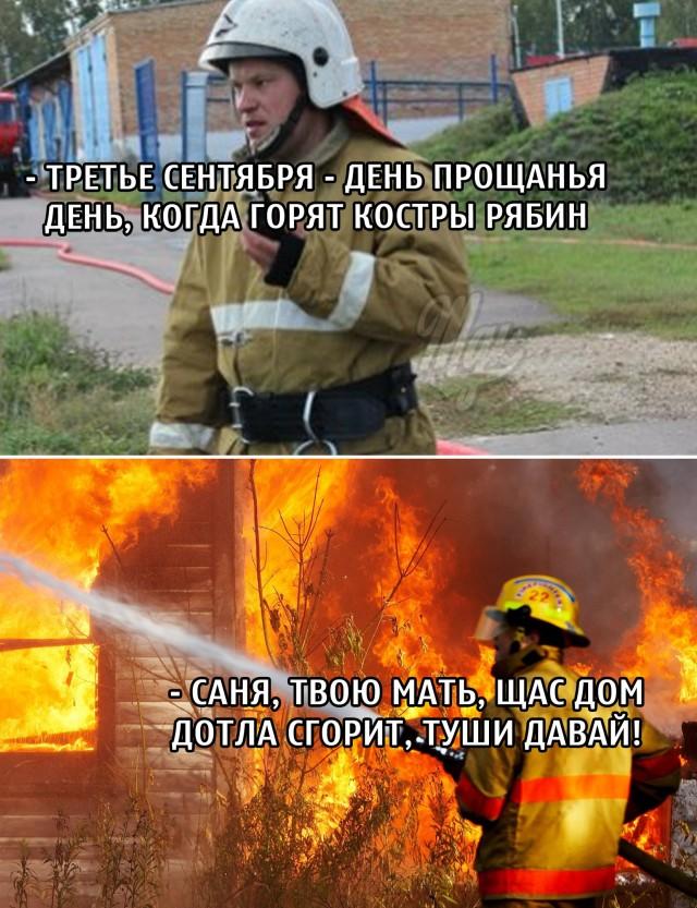 Пожарный и костры рябин