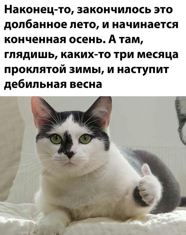 1599145667_podb_vecher_33.jpg
