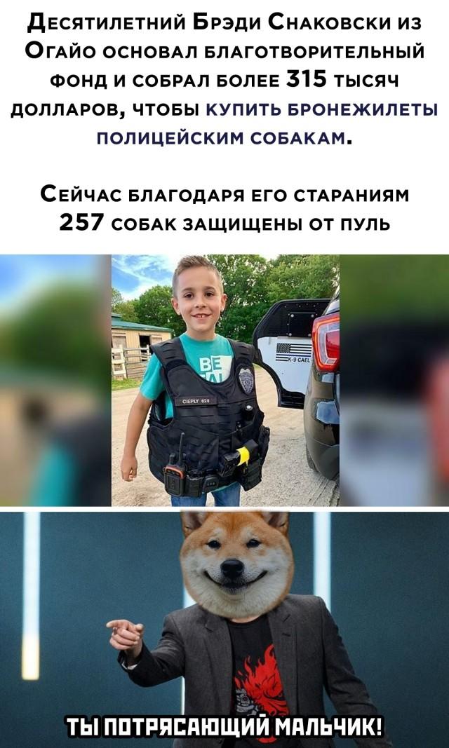Ребенок собрал средства на защиту для служебных собак
