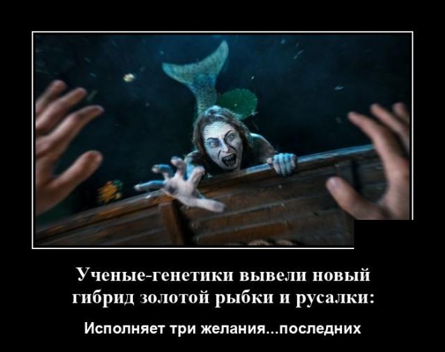 Демотиватор про русалку