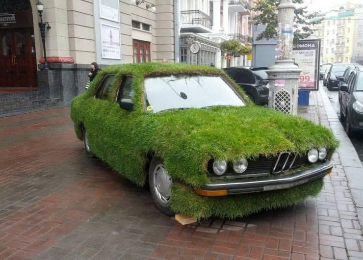 BMW покрытый травой