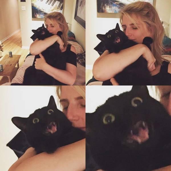 Испуганный кот и хозяйка