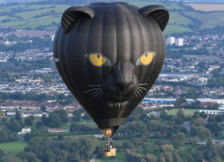 Воздушный шар черная пантера