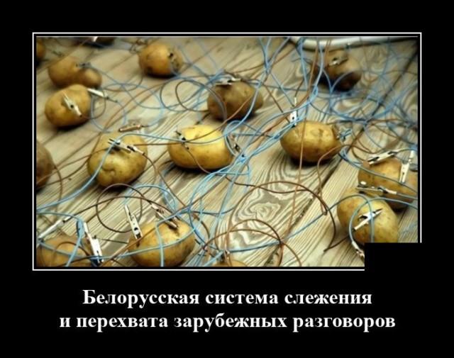 Демотиватор про разведку в Белоруссии